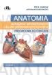 Anatomia narządów wewnętrznych i układu nerwowego człowieka. Przewodnik do ćwiczeń