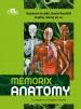 Memorix Anatomy