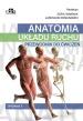 Anatomia układu ruchu. Przewodnik do ćwiczeń